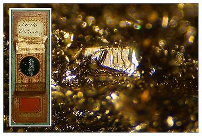 Antique Papered Microscope Slide ~ Needle Antimony ~ Geology Mineral Deep Cell