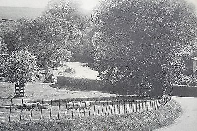 CLAXBY NEAR ALFORD LINCOLNSHIRE 1906 Vintage Postcard