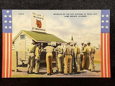 Vintage  Postcard Wildcats 81St Division Lair Camp Rucker Alabama