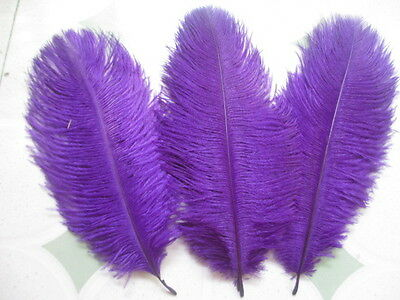10pcs Beautiful purple ostrich feather 6-8 inch 15-20 cm Free Shipping