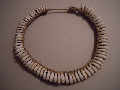 Antique Papua New Guinea Shell Necklace.