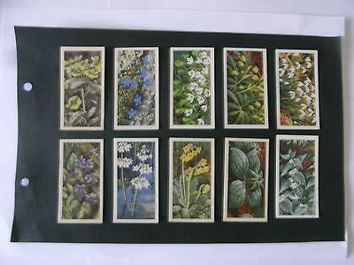 Full Set x 50 Tea Cards Brooke Bond  Wild Flowers Series III.  1964.