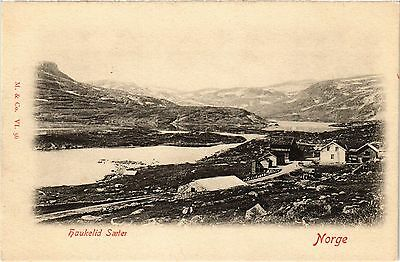 CPA Haukelid Saeten. NORWAY Norge (a3360)