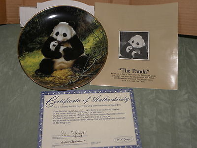 The Panda By Will Nelson ~ Last Of Their Kind