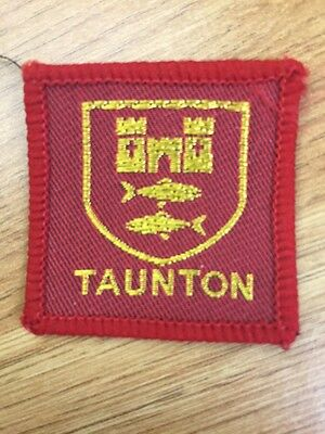 Taunton District UK Scout cloth badge