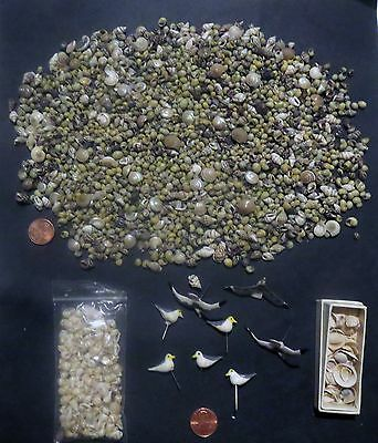 HUGE LOT Miniature Dollhouse MICRO TINY SHELLS & Decoys - Accessory Collection
