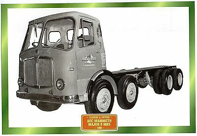 AEC Mammoth Major 8 MK5                              Glossy   Picture (T256)