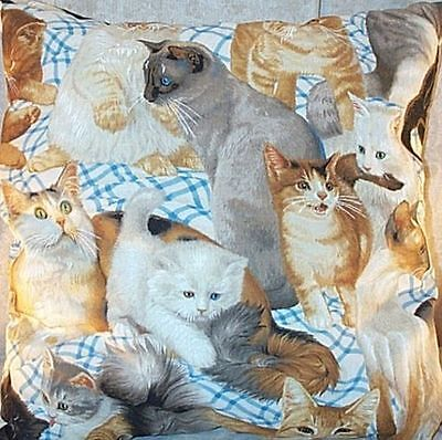 """Home Decor' Pillow Cats Lots of 18"""" by 18"""" Blue White Gray Yellow NEW"""