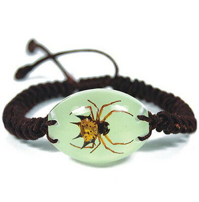 Glow In The Dark Oval Lucite Twisted Band Bracelet w/ REAL Spiny Spider YL1405