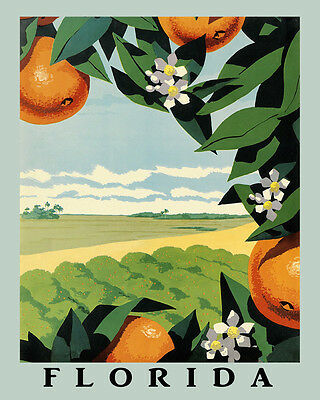 Sunshine Florida Oranges Fruits Farm Travel 16X20 Vintage Poster Repro FREE S/H
