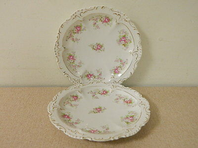 Set Of 2 Vintage Habsburg China Austria Bone China Plates Pink Flowers