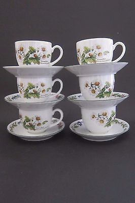 Royal Worcester Herbs Six Tea Cups and Saucers