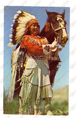 1950 ca NATIVE AMERICANS Western Indian maiden *VINTAGE postcard FP NV