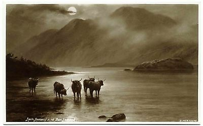 Early Real Photo Postcard . Highland Cattle Loch Lomond . Scotland