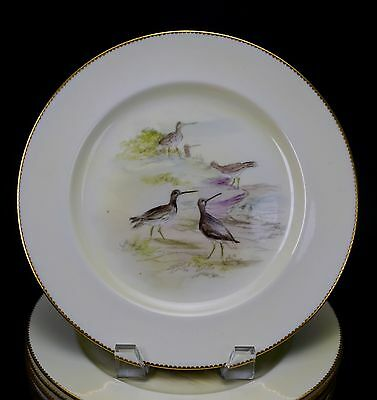 12 Hand Painted Early Royal Doulton Bird Game Cabinet Plates Bailey Banks Biddle