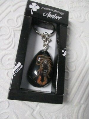 SCORPION SPECIMEN Real Key Chain Ring Genuine Insect Lucite Oddity Oddities New