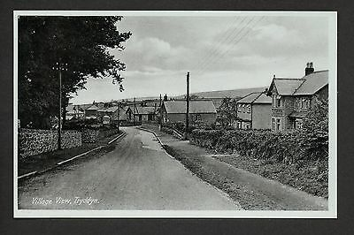 Tryddyn Village View -  printed photographic postcard