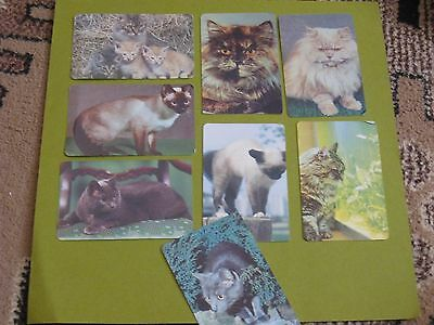 lot of 8 cat Russian pocket calendars 1992 (free ship $20 min US only)