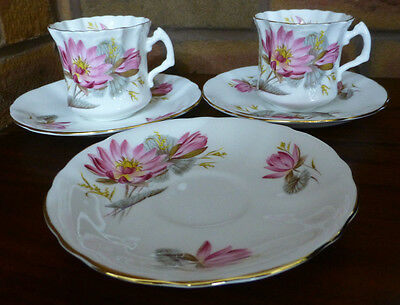 Hammersley China  2 Tea Cups and 3 Saucers 1912-1939 Early Back stamp.