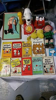 Lot 17 Ps. SNOOPY 1958 CHARLEY BROWN 1966 WOODSTOCK 1972 TOY  books wall picture