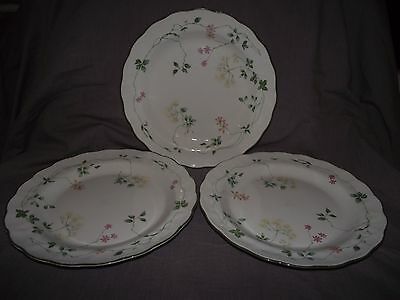 Set of 3 Royal Doulton Southdown Dinner Plates