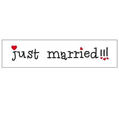 Just Married Card Number Plate Style Banner XP002
