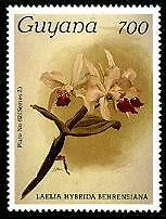GUYANA Sc.# 1273 Orchids NH Stamp