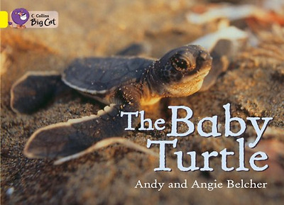 The Baby Turtles: Band 03/Yellow (Collins Big Cat) - Paperback NEW Belcher, Andy