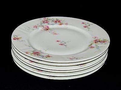 Antique Theodore Haviland Limoges Pink & Blue Floral Set Of 6 Dinner Plates