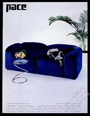 1977 German Shorthaired Pointer photo on Faleschini blue sofa Pace print ad