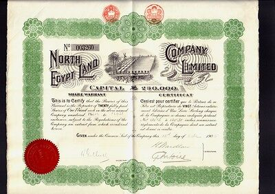 North Egypt Land Company Limited dd 1905