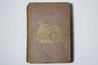 Rare 1861 LIFE AMONGST THE INDIANS GEORGE CATLIN 1st Ed. London Book LITHOGRAPHS
