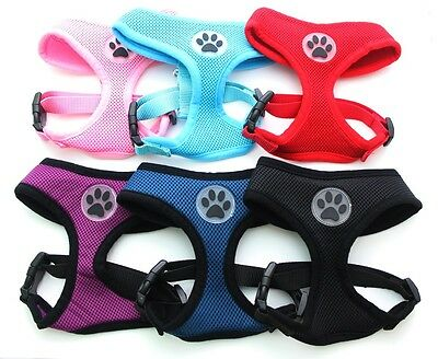 Dog Cat Control Harness Pet Soft Mesh Walk Collar Safety Strap Vest 5 size
