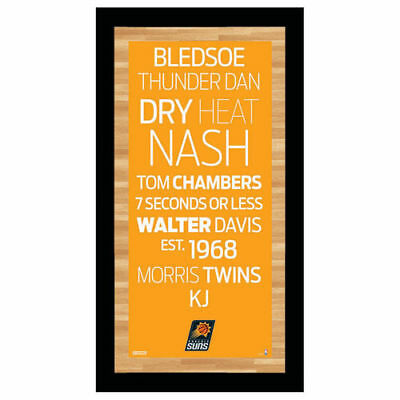 Phoenix Suns 9'' x 19'' Framed Subway Sign - Orange - NBA
