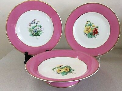 WT Copeland Bone China Luncheon Plates & Footed Comport, Pink Border Gilt Flower