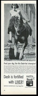 1953 Doberman Pinscher champion photo Dash dog food print ad