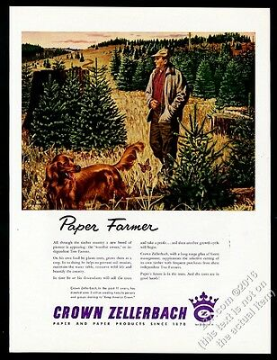 1954 Irish Setter and butterfly art Crown Zellerbach paper vintage print ad