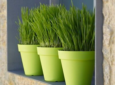 Job Lot Of 469 Pcs Garden Pot Planter Outdoor Pots Plastic (Pe) Artevasi Brand