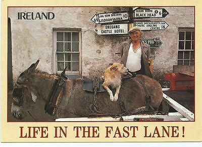 Colour Postcard - Life In The Fast Lane!  (Ireland)