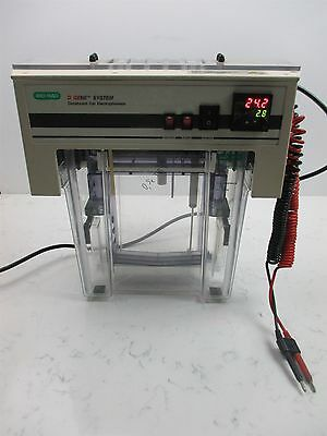 Bio-Rad D Gene System Denaturant Gel Electrophoresis Unit Health Care Lab