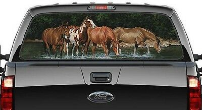Western Horse - Graphic Decal/rear Ute/canopy Window -  Quarter Horses