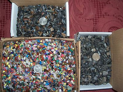 100 fossil shark teeth  and 100 gemstones per lot