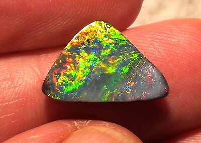 Fantastically beautiful Multicolour Boulder opal Top Stone - 7,1ctwith Video