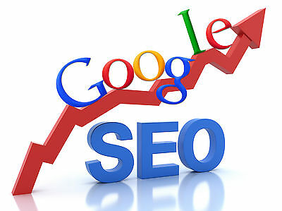 Guarantee'd Google 1st Page, 12 Months SEO Marketing & Submission Programme