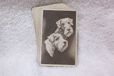 Deck of AIREDALE TERRIER PLAYING CARDS - Vintage - Dogs -Used -Complete 52 cards