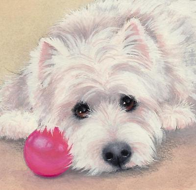 "Westie ""My Red Ball"" Limited Edition Art Print of Original Painting-Sue Barratt"