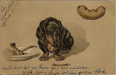 Dachshund Artist Drawn Dog Postcard