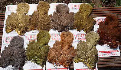 Whiting BRAHMA HEN Softhackle & Chickabou mottled gray dyed 9 Farben Auswahl