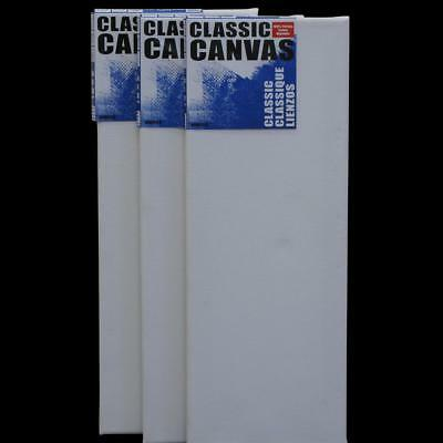 "Set of 3 Artists Blank Art 20cm x 50cm 17mm Flat Canvas Gesso Primed 8""x 20"""