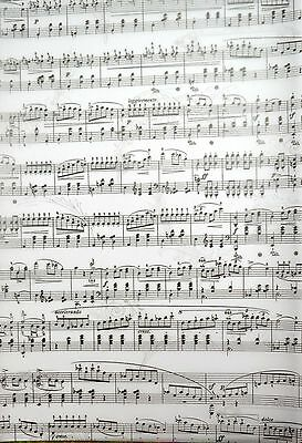 2 x A4 White Music Manuscript Patterned Vellum NEW